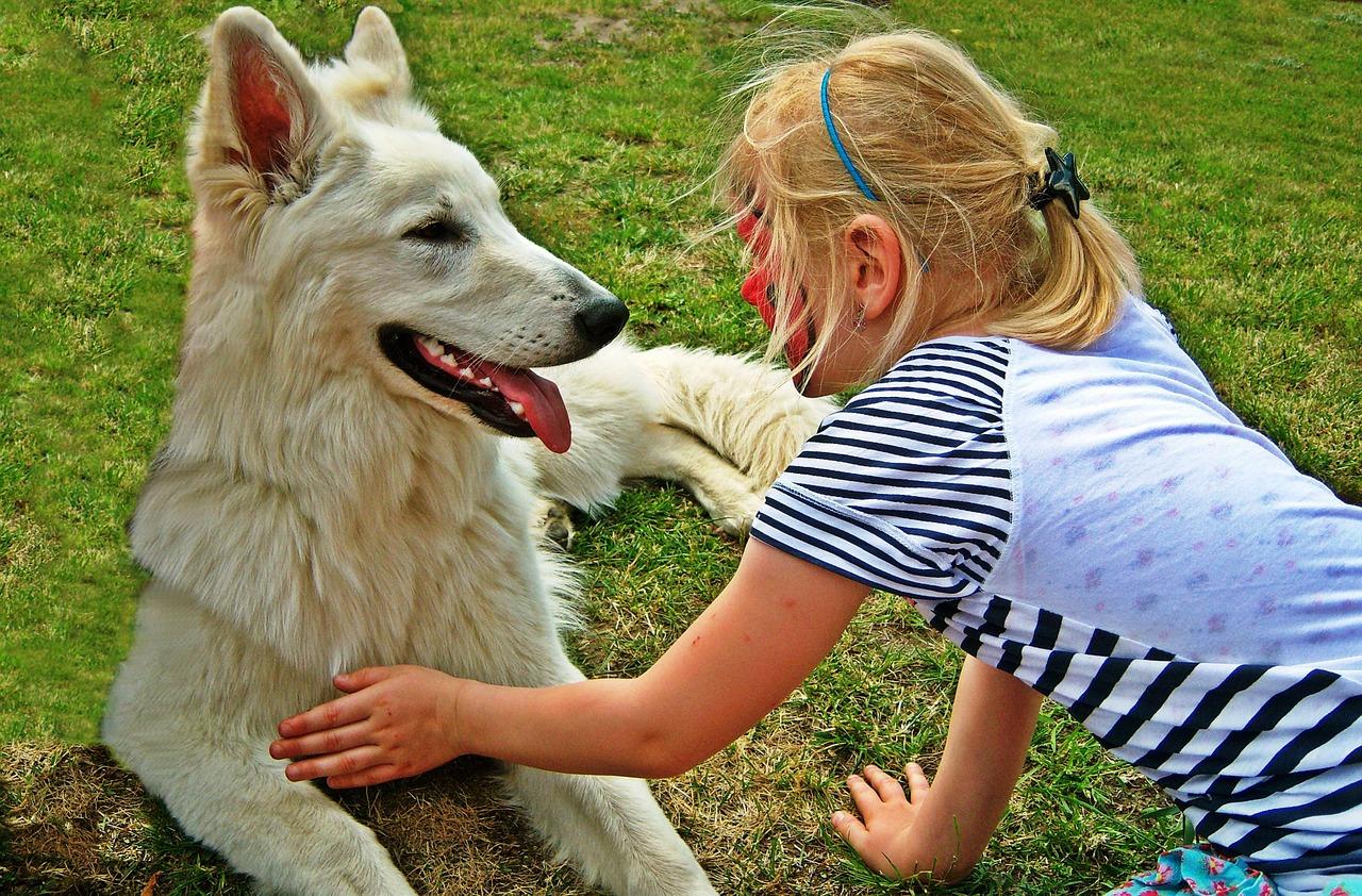 Jakie psy dla rodzin z dziećmi są najlepsze